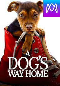 A Dog's Way Home - Vudu HD or iTunes HD via MA (Digital Code)