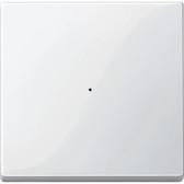 System M Rocker for 1-Gang Push-Button Module