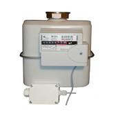 Elster Single Adapter Gas Meter BK-G4T