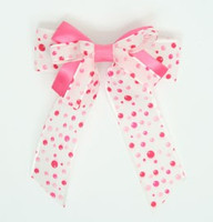 Dot retro pink double hair clips piece