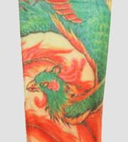Phoenix green fake tattoo sleeves accessory