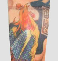 Phoenix color fake tattoo sleeves accessory