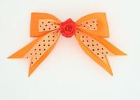 Dot orange / flower red orange flower
