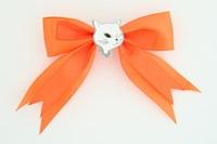 Orange / cat white orange animal