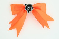 Orange / cat black orange animal