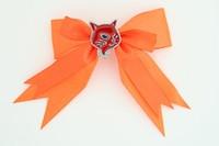 Orange / cat red orange animal