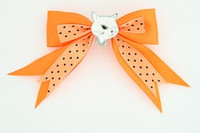 Dot orange / cat white orange animal