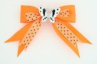 Dot orange / swallow red orange animal
