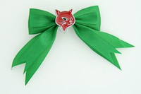 Geen / cat red green animal