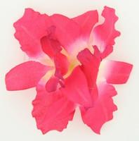 M orchid D pink medium flower