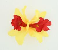M orchid yellow medium flower