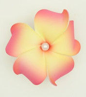 M foam L pink-yellow medium flower