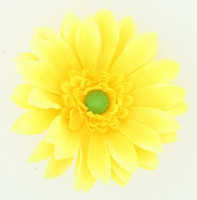 M daisy yellow medium flower