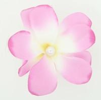 M C pearl L purple medium flower