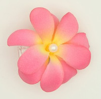 M C pearl L pink-yellow medium flower
