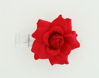 S rose red small flower