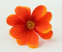 S orange small flower