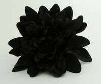L dalia black big flower
