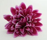 L dalia purple big flower