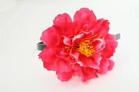 L botan d-pink big summer flower