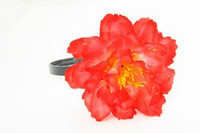 L botan red big summer flower
