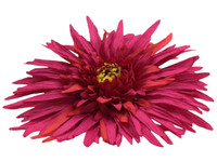 Magenta daisy single hair flower clips