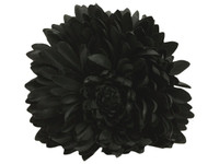 Black opium double hair flower clips