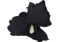 Black orchid double hair flower clips