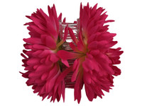 Pink opium double hair flower clips