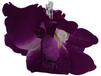 Purple orchid double hair flower clips
