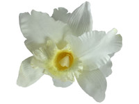 White orchid double hair flower clips