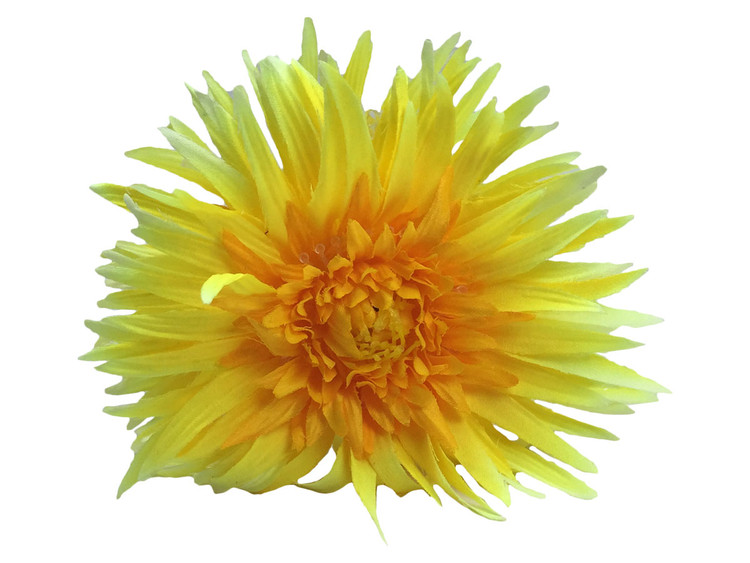 Yellow daisy double hair flower clips