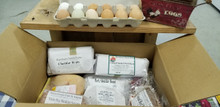 20 LB WINTER SAMPLE PACK WITH EGGS!