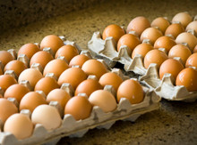 Flat of 2.5 dozen eggs NO MARKET PICK UP DELIVERY ONLY