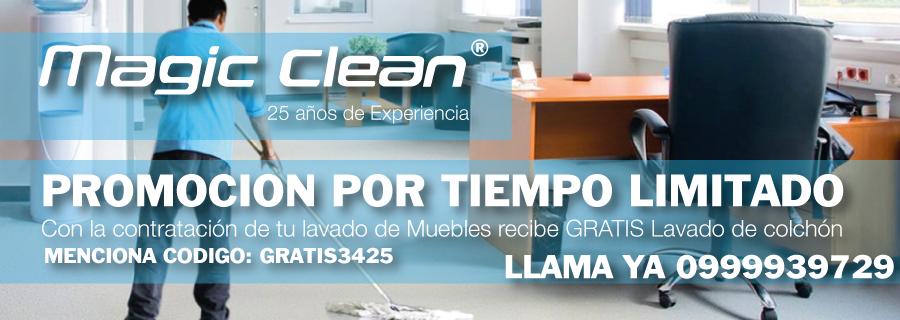 lavado-de-muebles-promocion-quito.png