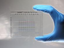 GoPAGE™ Bis-Tris Precast Gel, 8% 12 Wells, 10 x 10 cm, 10 gels/PK
