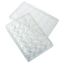 CellTreat Brand 24-well Tissue Culture Treated Plates, 100/CS