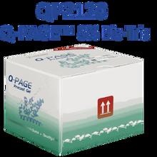 SMOBio Q-Page 8 percent 15 Well Mini Bis-Tris Pre-Cast Gels for Western Blots QP2120 - Electrophoresis Supplies - Stellar Scientific