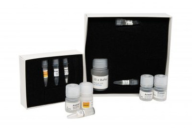 MicroGEM ForensicGEM Sperm Cell DNA Extraction Kits  contains forensicGEM Sperm, Acrosolv, and ORANGE+ buffer