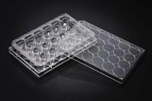 Stellar Scientific 24-Well Tissue Culture Treated Plates 50/CS