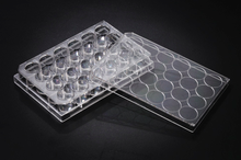Stellar Scientific 24-Well Polystyrene Multiwell Plates with Vacuum Gas Plasma Treated Surfaces for Growing Adherent Cell Lines.