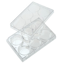 6-well cell culture non-treated plates, flat-bottom, sterile, 50/CS