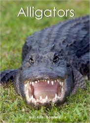 Alligators - Level H/13