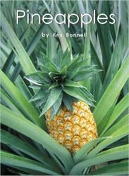 Pineapples - Level J/17
