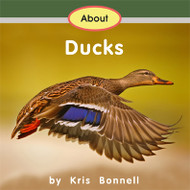 About Ducks - Level A/1