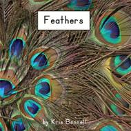 Feathers - Level C/2