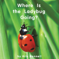 Where Is the Ladybug Going - Level D/4