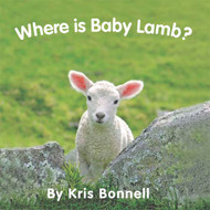 Where Is Baby Lamb - Level C/3