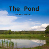 The Pond - Level A/2