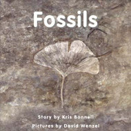 Fossils - Level B/2